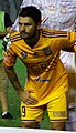 UANL Tigres 2015 - копия.jpg