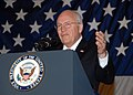 US Navy 070914-N-5783F-008 Vice President Dick Cheney speaks to members of Central Command, Special Operations Command and 6th Air Mobility Wing at the MacDill Air Force Base theater.jpg