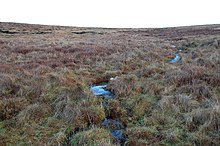 Unnamed Burn, Glimps Holm - geograph.org.uk - 1071539.jpg
