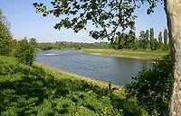 Uzh river ukraine.jpg
