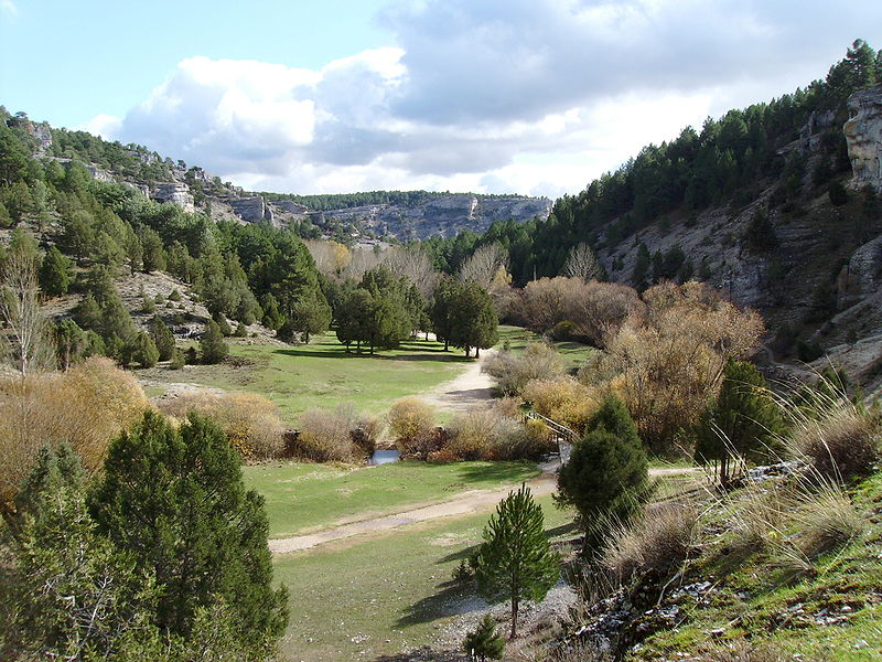 File:Vall rio lobos.JPG
