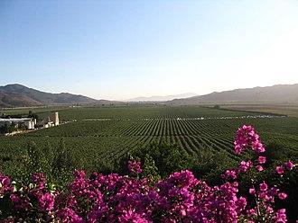 Ensenada, Baja California - Guadalupe Valley