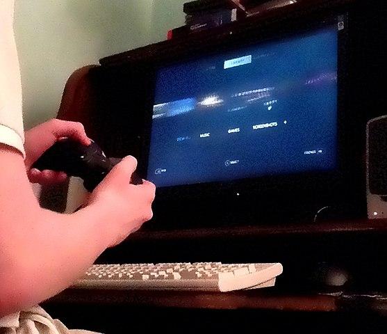 96% датских юношей в возрасте от 13 до 19 лет регулярно играют в компьютерные игры