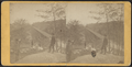 View looking south on the Trestle Bridge, at East Tarry Town, N.Y. on the New York, Boston & Montreal Railway, from Robert N. Dennis collection of stereoscopic views 2.png