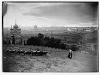 View of Jerusalem & Gethsemane. Sheep & shepherd in foreground. LOC matpc.04248.jpg