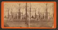 View of Mrs. Beatties' residence, Greenville, S.C, by Great Southern Photo Company.png