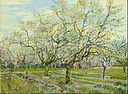 Vincent van Gogh - The white orchard - Google Art Project.jpg
