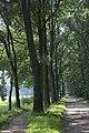Voormalig spoorlijn naar Bocholt, omgezet tot onverharde weg met fietspad - Woold - 20430045 - RCE.jpg