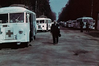 White Buses