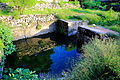 Water from Fountainhead colelcted in a manmade pond at Shah Allah Ditta Village.JPG