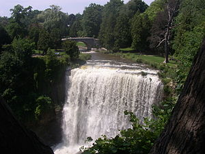 Webster's Falls - Image: Waterdawn Webster Falls 5