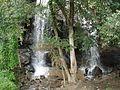 Waterfall,valparai,tamilnadu - panoramio.jpg