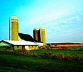 White Barn with Three Silos - panoramio.jpg