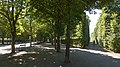 Wien 02 Augarten bc.jpg