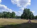 Wikimania 2014 - 0803 - Sunday in Hyde Park220915.jpg