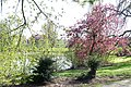 Wilhelminapark, Breda P1460803.jpg