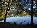 Wollaton park(Nottingham).jpg