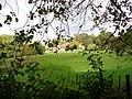 Woolhouse Farm - geograph.org.uk - 264117.jpg