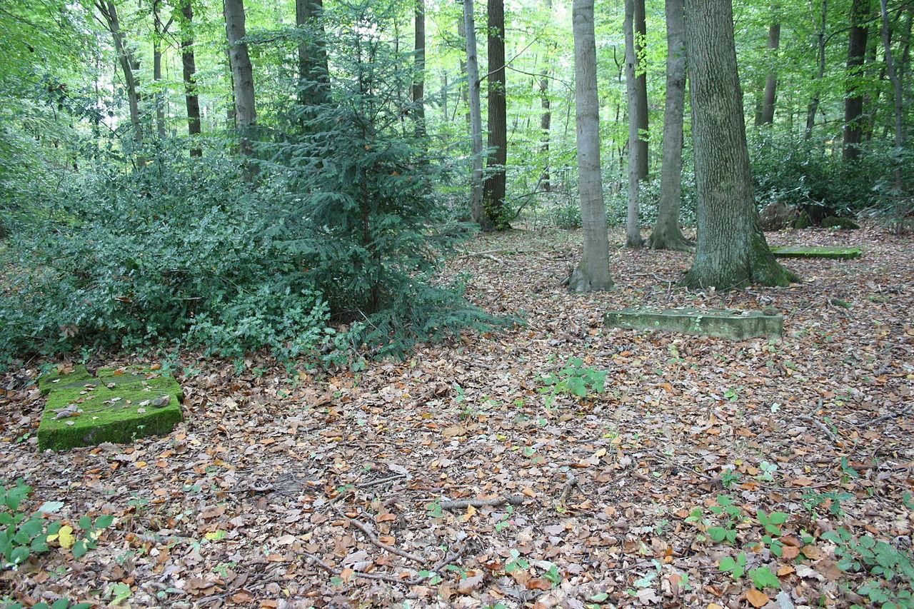 Wormersdorf (Rheinbach) Jüdischer Friedhof589.JPG