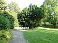 Wuppertal Hardt 2013 552.JPG