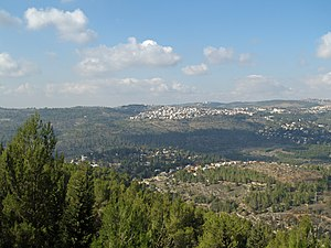 Jerusalem Forest - View of Jerusalem Forest from Yad Vashem