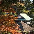 Yamanouchi, Kamakura, Kanagawa Prefecture 247-0062, Japan - panoramio (11).jpg
