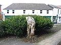 Yew Stump - geograph.org.uk - 137488.jpg