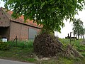 Zottegem Erwetegem Steenbergen 4 Welkomstlinde (2) - 193083 - onroerenderfgoed.jpg
