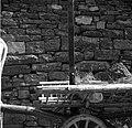 """""""Kozec"""" na vozu (kozec je priprava za vožnjo sena in žita, Pomjan) 1950.jpg"""