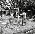 """""""Lojtre""""- modu za vile krivit, Sad, pri Kozlevčarji 1950.jpg"""