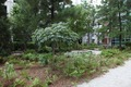 """Zones of Change"" at Edward R. Roybal Building (CDC), Atlanta, Georgia LCCN2010720500.tif"