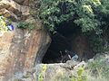 'The Cave' - Melville Koppies Nature Reserve.jpg