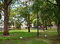 (1)Civic Park Auburn.jpg