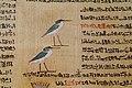 Ägyptisches Museum Kairo 2016-03-29 Papyrus 04.jpg