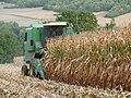Épône - récolte du maïs01.jpg