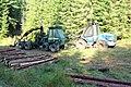 Šumava, lesní mechanizace (2).jpg
