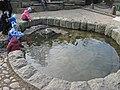 Александровский парк, фонтан у грота01.jpg