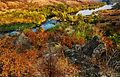 Бузький Град восени.jpg
