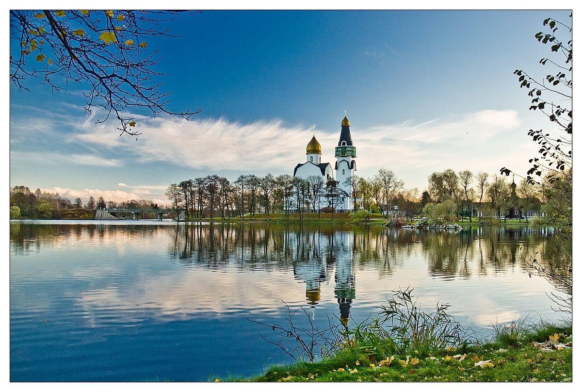 Размещение статей в Сестрорецк продвижение компании через сайт