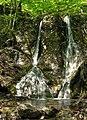 Водопад Гейзер.jpg