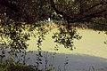 """Дача Эсворт (""""Литания"""") 2.jpg"""
