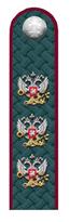 Действительный гос. советник РФ 1 класса ФНС.png