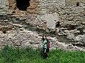 Дослідження ентомофауни на території замку Междибіж.jpg