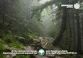 Кишеньковий календар ВЛЗ на 2019 рік. Ліс біля гори Смотрич.pdf