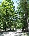 Ковалівський парк в м.Кіровоград.JPG