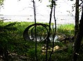 На берегу возле Шокшинского маяка - panoramio.jpg