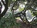 Парк бомон 2 - panoramio.jpg