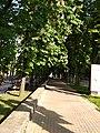 Парк імені Шевченко у місті Хмельницькому, 9.jpg