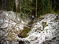 Приток к ручью Капустница - panoramio.jpg