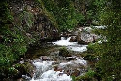 Река Тушканчик.jpg